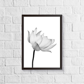 Quadro Flor de Lótus